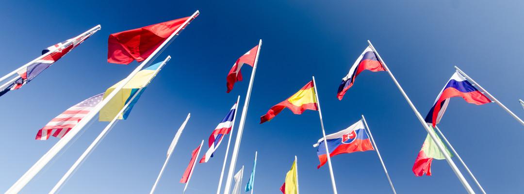 vlajkosláva